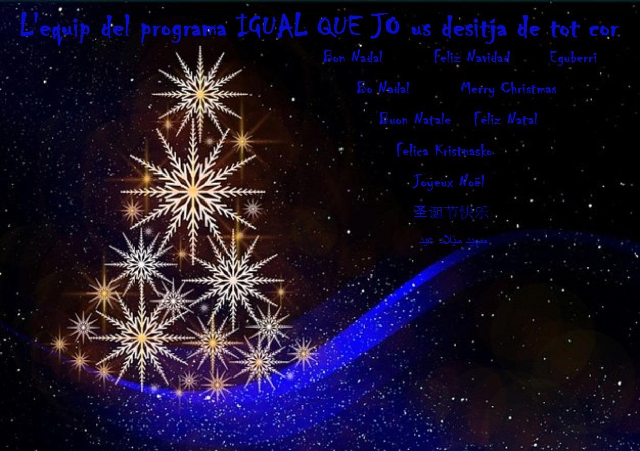 Felicitació Nadal 2014 IQJ